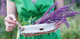 Лекарственная трава