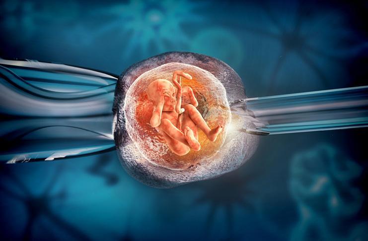 День подсадки эмбриона
