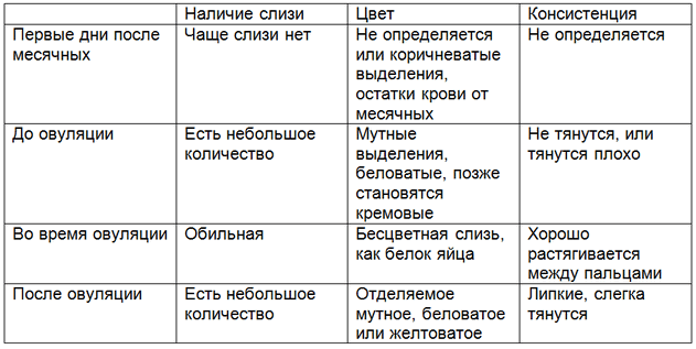 Таблица тип выделений